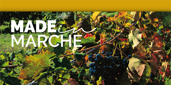 Made in Marche Regione Marche